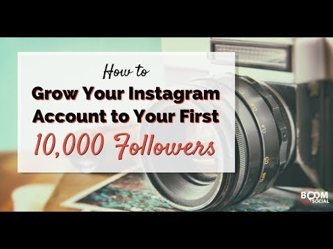 Shopify Training – How To Get 100K Real On Instagram for Free